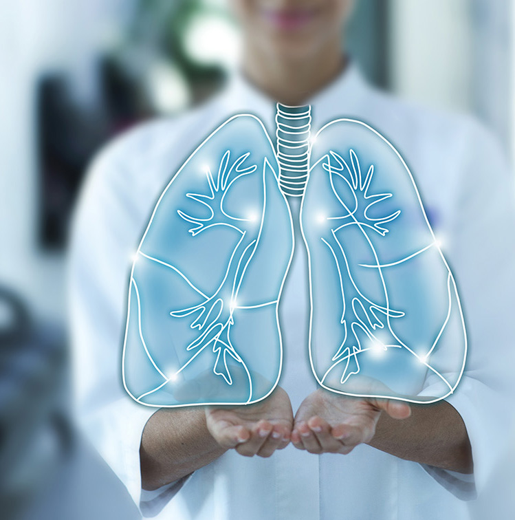 doctor holds the sensory lungs. Diseases and treatment of lungs, bronchitis, pneumonia